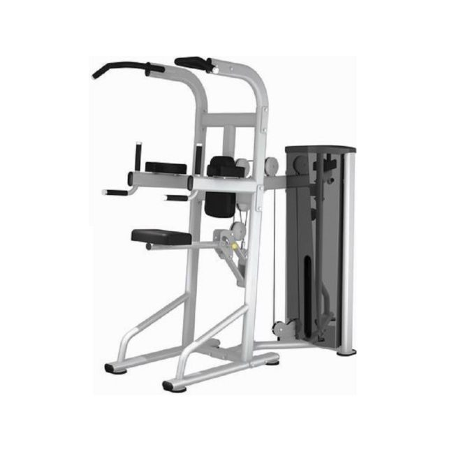 Commercial Assisted Pullup / Dip, DA Series